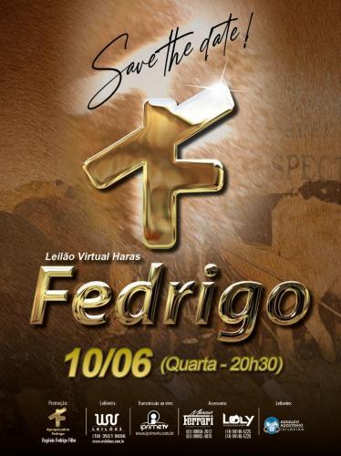 Leilão Virtual Haras Fedrigo