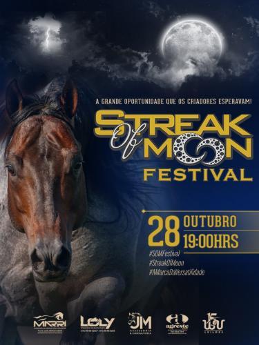 2º Leilão Virtual Streak OF Moon
