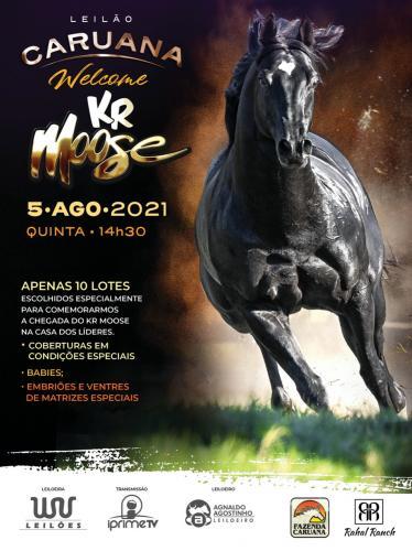 Leilão Caruana - Welcome KR MOOSE