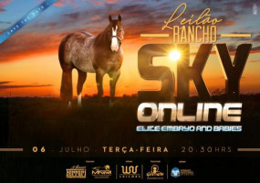 Leilão Rancho Sky On Line- Elite Embryo And Babies