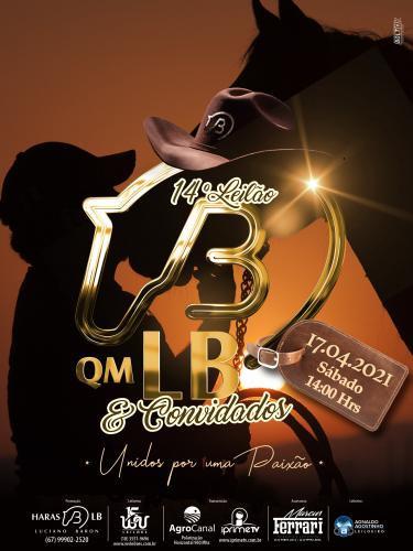 14º Leilão Live QM LB e Convidados