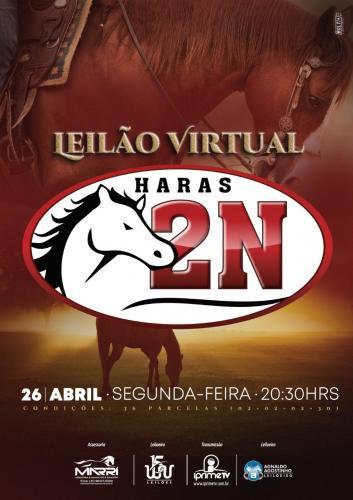 Leilão Virtual Haras 2N