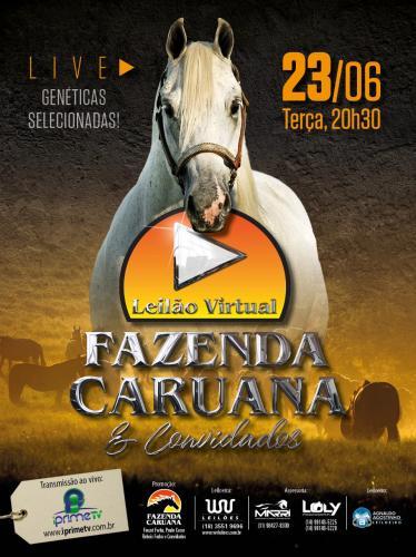 Leilão Virtual Fazenda Caruana e Convidados
