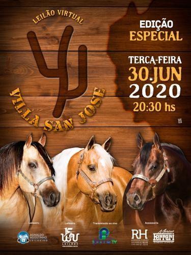 Leilão Virtual Haras Villa San José - Edição Especial