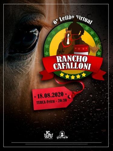 6º Leilão Virtual Rancho Cafalloni