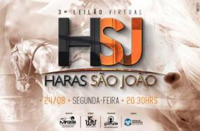 4º Leilão Virtual Haras São João