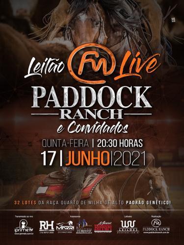 Leilão Live Paddock Ranch