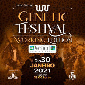 Leilão Virtual WV Genétic Festival - Working Edition