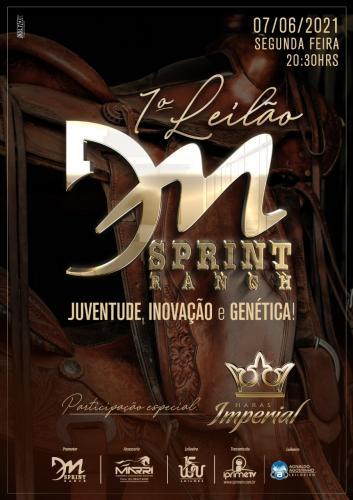 1º Leilão DM Sprint Ranch